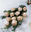 On Sale 1 Dozen Roses