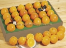 2 dozen of juicy oranges