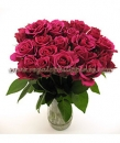 Luxury Red Rose