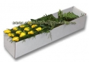 Yellow roses in box